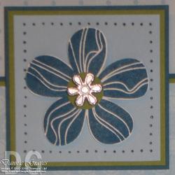 Sudsol_flower